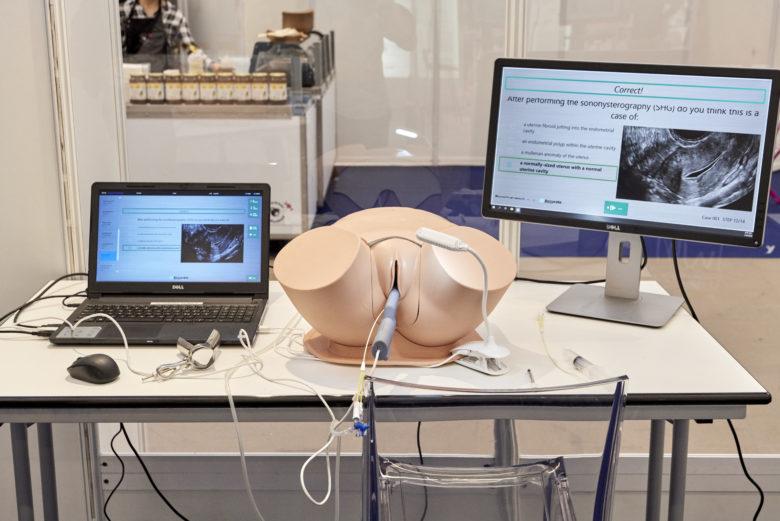 SonoHysteroSim - Simulateur de Sonohystérographie