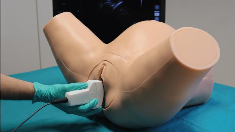 IUSim - Simulateur d'Echographie Intrapartum
