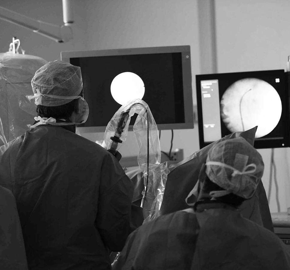 Matériel de Simulation d'Endo-Urologie - Twin Medical