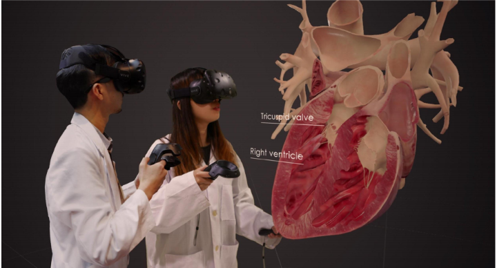 BodyMap - Simulateur Anatomique en Réalité Virtuelle - Twin Medical